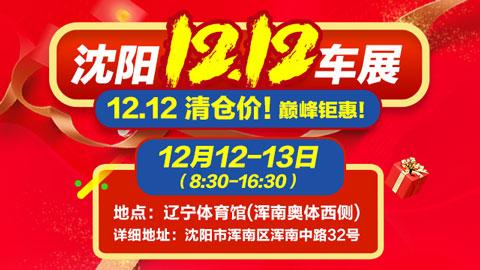 2020沈阳双12车展