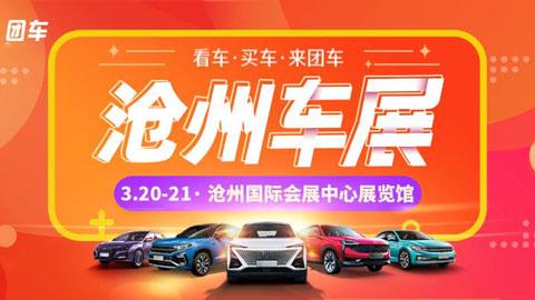 2021沧州第二十七届惠民团车节