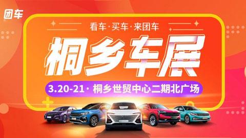 2021桐乡第6届惠民车展