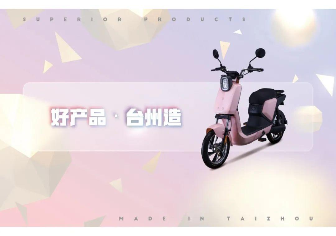 台州电动车及零部件展