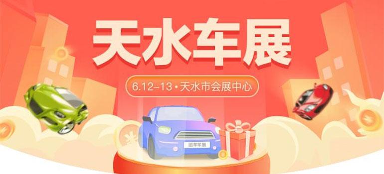 2021天水第九届惠民团车节