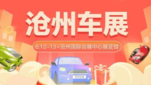 2021沧州第二十九届惠民团车节